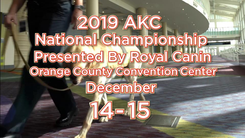 2019 AKC National Championship
